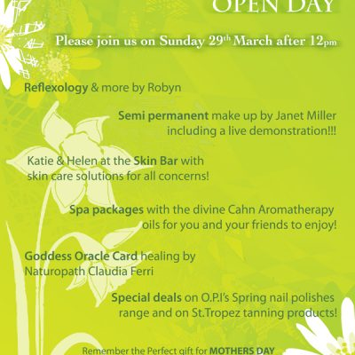Day Spa Spring Open DayPoster