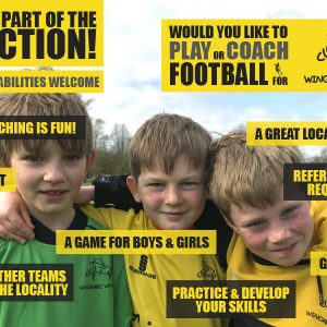 Wingrave Wasps POSTER 2